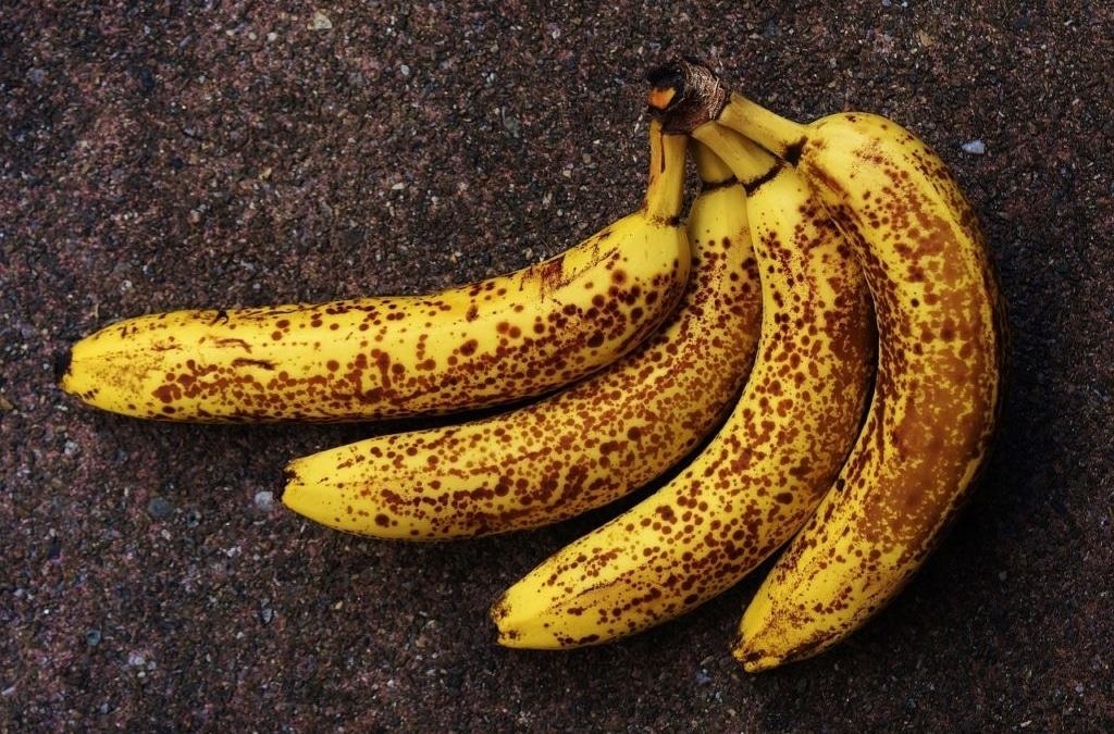 De les van de bruine banaan