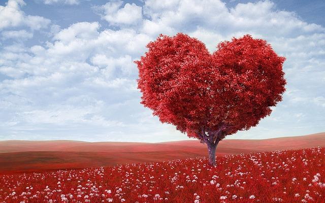 Een kaartje op de liefde