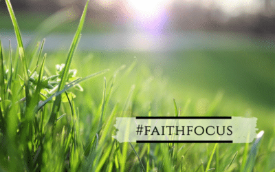#faithfocus: gras groeit niet sneller als je er aan trekt