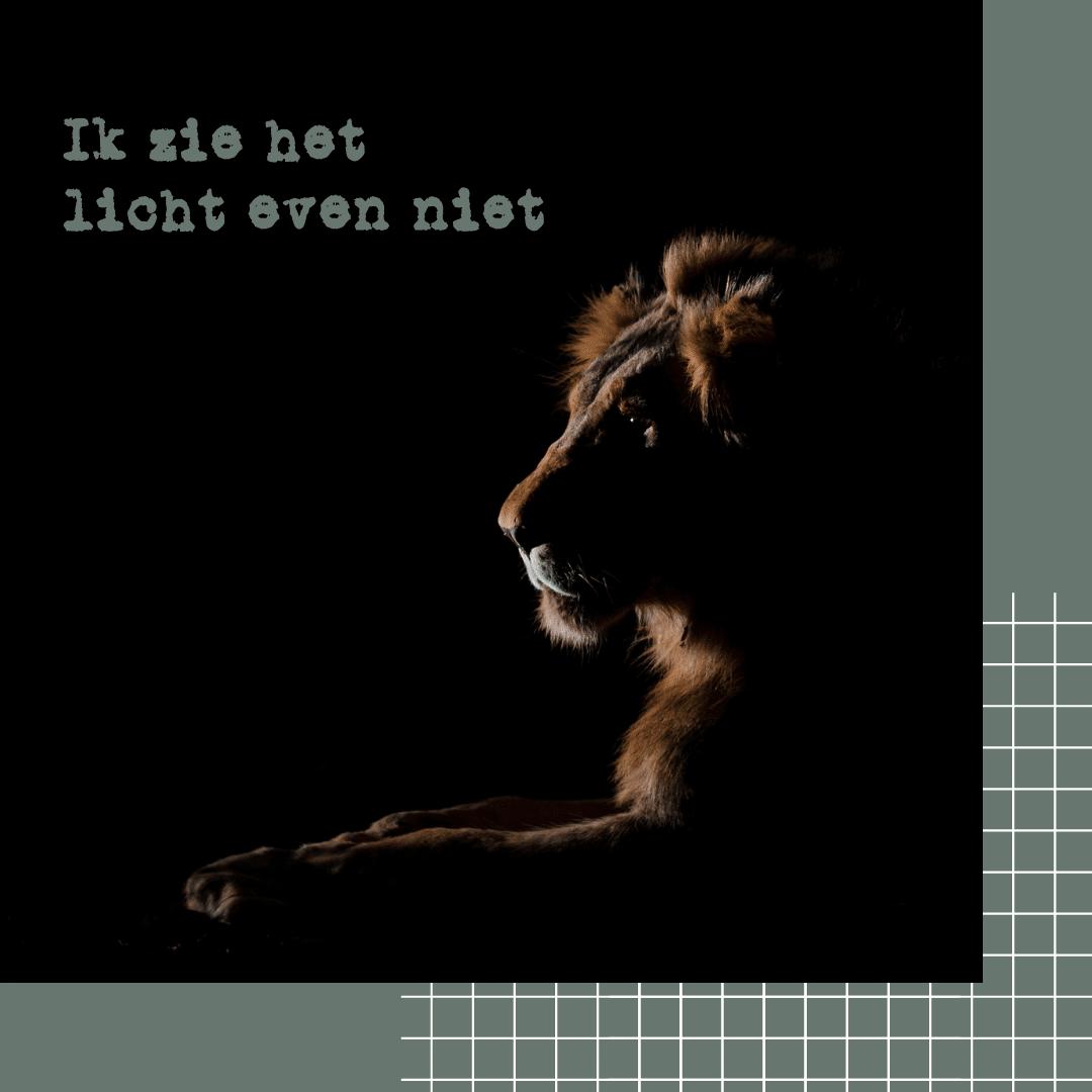 Ik zie het licht niet